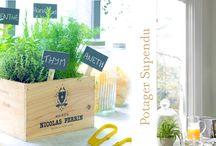 Diy Extérieur / Une sélection de créations Diy pour vos extérieurs (balcons, terrasses, jardins...).  Plus d'infos sur mon site http://ambiancediy.fr