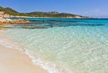 News' on Sardinia