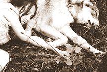 Wölfe, Eulen, Füchse