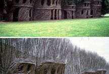 Nature-Based Art
