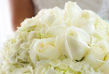 Wedding Bouquet Ideas / Wedding Bouque Ideas. Photos by Hazelwood Photography. #WilmingtonNCWeddingPhotographers www.cHazelwoodphotography.com