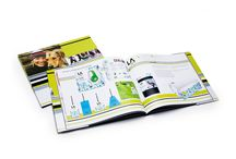 Print / design, layout, and pre-press production and coordination for catalogs, sell sheets, brochures, incentives and support materials