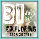 Exploring God's Creation / learning in the great outdoors
