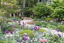 Show Gardens / Some show gardens that we like