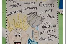 Anchor Charts for Science / anchor charts for elementary science