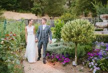 Los Gatos Wedding / by Lilia Photography