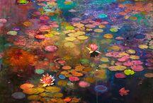 Light & Colors