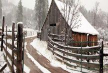 pitture neve