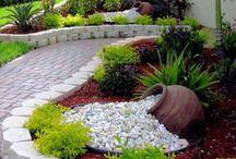 Idée de jardin et fleur