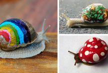 Pimp a snail