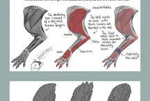 dragón sketch and tips