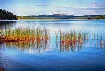 Rekultywacja jezior / Rekultywacja jezior – bariery biologiczne