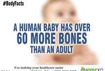 Facts About Body