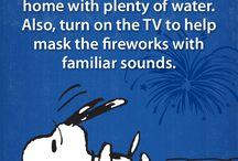 July 4th & Fireworks