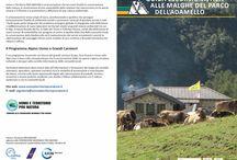 Guida escursionistica alle malghe del Parco dell'Adamello / E' un progetto dell'Associazione Uomo e Territorio Pro Natura realizzato, grazie al contibuto ed alla collaborazione del Parco dell'Adamello, nell'ambito del Programma Alpino Uomo e Grandi Carnivori e del Programma Vivere le Alpi.