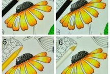 Kleuren en tekenen / Tekenen en kleuren