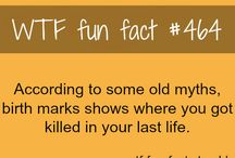 WTF Fun Facts.