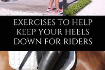 Equestrian Excercise