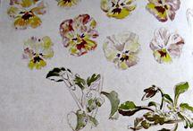 Beatrix Potter's Flowers