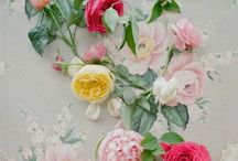Flowers / by Christine Kohlmeier