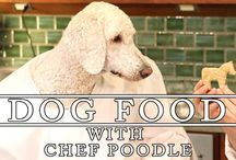 Dog Food With Chef Poodle / Recipe's that are healthy and delicious for humans and their canine companions! / by The Pet Collective Tv