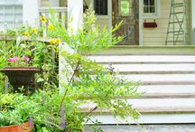 Outdoor Front stairs