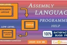 Need Help with Assembly Language Assignment?