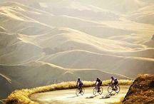 Bike passion / Andare in bici è una passione irrefrenabile; scopri su questa bacheca le immagini più emozionanti.