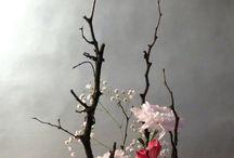 Ikebana/decorazioni/arte