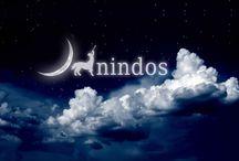 nindos / nindos company