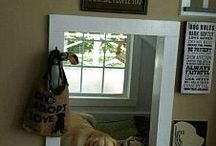 neat dog rooms
