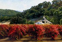 California Vineyards, Studio Seven Arts / Gorgeous vineyards for you walls!