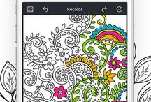 Coloring Pages / Adult coloring pages