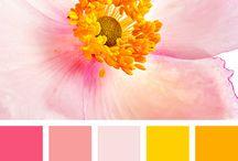 warm shade colour