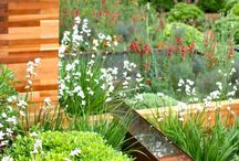 Rusts & Warm Tones in the Garden / Corten steel landscaping features, warm wood tones & plants to go with them