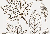 Деревья / Листва, ветви, плоды и пр.
