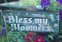 Beauty of Flowers / by Jill Bumbaca