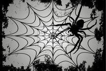 паутина паук