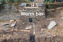 worm cacing