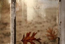 Gemporia | Autumn / by GEMPORIA