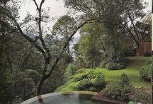 Dreams of a Garden Pool