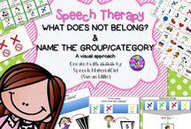SLP / Vocabulary