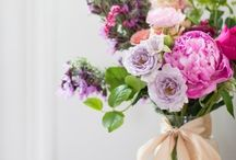 Flowers/Centerpieces / by Lisa Nugent