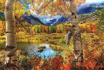 Seasons  / by Jana Rousakov