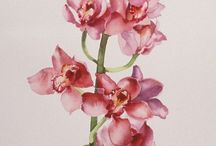 { orchids }