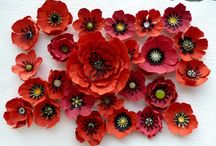diy paper flowers / by Connie Timms