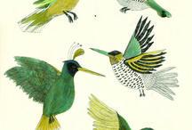 Birds art illustrations