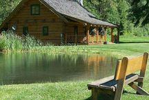 Wonderful cabins