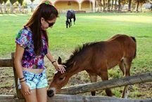 Caballos y yo