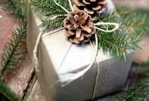 Pine Cones - DIY projects